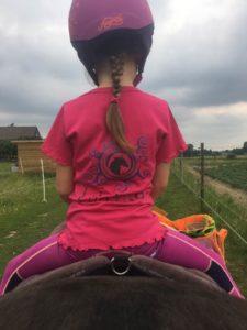 paarden en ezel prikkels
